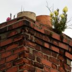 Inspecting An Unused Chimney