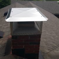 replace flue cap indianapolis